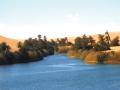 14_-oasi-nel-deserto