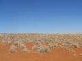 I COLORI DEL DESERTO