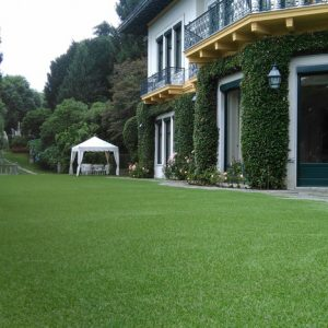 Excellent Green | Lucon
